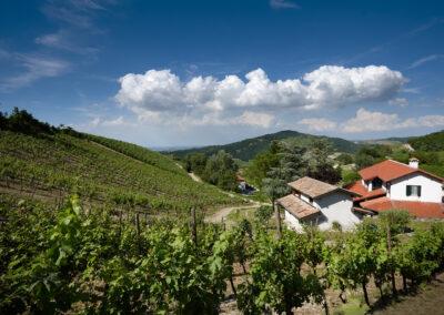 Landschaft Boffenisio